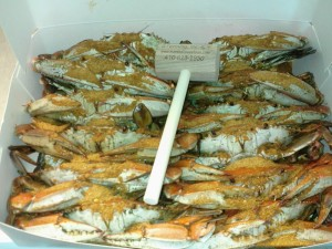 Marshalls Male Hard Shell Crabs