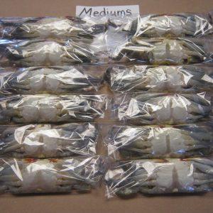 1 Dozen Medium Crabs