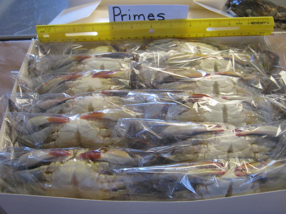 Dozen Primes